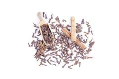 Clove, anis, cinnamon. Cloves, anis and cinnamon sticks on isolated background royalty free stock photos
