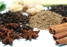 Clove and cinnamon Royalty Free Stock Photo