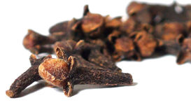 Clove composition Royalty Free Stock Image
