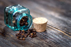 Clove essential oil Royalty Free Stock Images