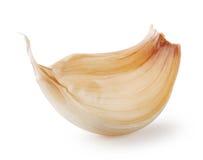 Clove of garlic Royalty Free Stock Photos