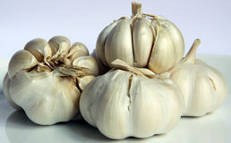 Clove of garlic Royalty Free Stock Images