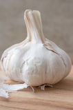 Clove garlic vertically Royalty Free Stock Photography