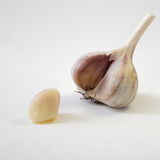 Clove garlic. Garlic is very useful product for the health Stock Photos