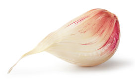 Clove of garlic Royalty Free Stock Image