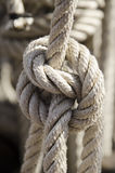 Clove hitch Stock Photography