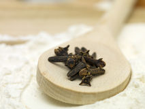 Clove pieces placed on a wooden spoon Royalty Free Stock Image