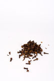 Clove spice. Dried spicy clove isolated over a white background Stock Photography