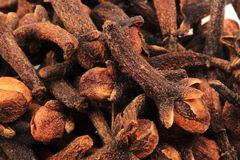 Clove spice background Royalty Free Stock Photo