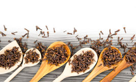 Clove spice Stock Photography