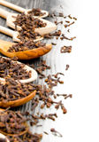 Clove spice Royalty Free Stock Images