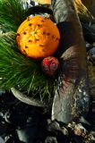 Clove spice spiked Christmas decorated orang fruit in seaweed and driftwood Christmas in July royalty free stock photos