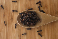 Clove spice Royalty Free Stock Photo