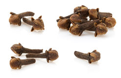 Clove spices Royalty Free Stock Photography