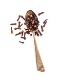 Clove in spoon Royalty Free Stock Images