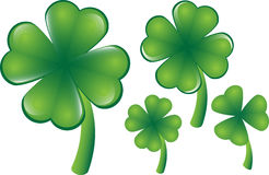 Clover. Vector clover, different versions, four or three leafs. They can be scaled individualy at any desired size Stock Image
