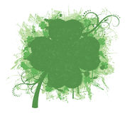 Clover. Stock Image