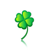 Clover 3 Royalty Free Stock Photography