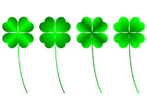 Clover. Four leafs, luck and fortune royalty free illustration