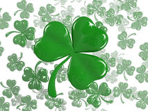 Clover. Green clover isolated st Patrick Royalty Free Stock Photo
