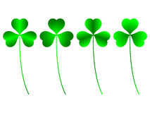 Clover. Three green leafs, different vector illustration