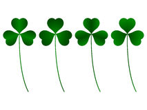 Clover. Three green leafs, different royalty free illustration