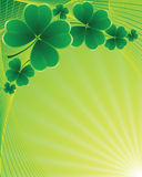 Clover background for the St. Patrick's Day Royalty Free Stock Images