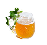 Clover and beer Stock Images