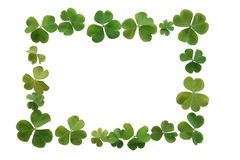 Clover Boarder or Clover Frame. Frame or boarder made of fresh green clover, perfect for St. Patrick's Day Stock Photo