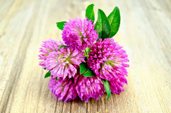 Clover bouquet on the old board Stock Photo