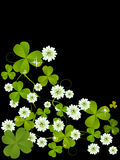 Clover card. Celebration card with clover for St. Patrick's Day design Stock Photography