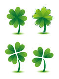 Clover collection Royalty Free Stock Photos