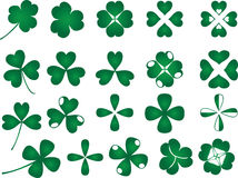 Clover collection Royalty Free Stock Image