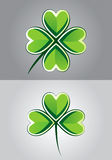 Clover Drawing Stock Photography
