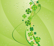 Clover and drops Royalty Free Stock Photography