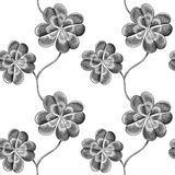 Clover. Engraved seamless pattern with four leaf clover stock illustration