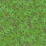 Clover Field Seamless Pattern. This image can be composed like tiles endlessly without visible lines between parts Stock Photos