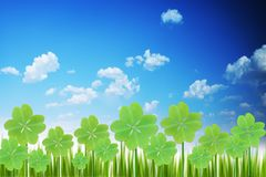 Clover field or shamrock with green grass under the blue sky Stock Image