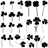 Set clover. Stock Images