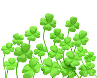 Clover forest Stock Image
