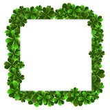 Clover frame Stock Photography