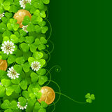 Clover glade and golden coins 2. Patrick's Day background: Clover glade and golden coins Royalty Free Stock Images