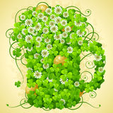 Clover and golden coin in the shape of beer mug Royalty Free Stock Image