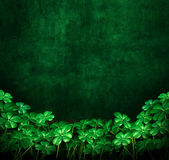 Clover Green Grunge Background Royalty Free Stock Images