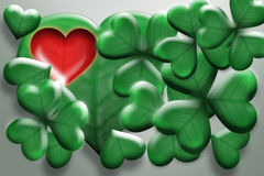Clover - heart. Leaves, leaf clover, on a white background, good luck, the heart of shamrock Stock Photo
