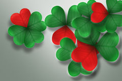 Clover - heart. Leaves, leaf clover, on a white background, good luck, the heart of shamrock Stock Photography