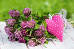 Clover with heart Stock Photography