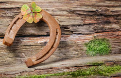 Clover and horseshoe Stock Image