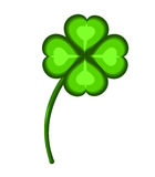 Clover illustration Stock Photography