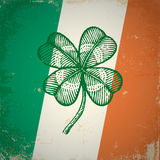 Clover on Irish flag Stock Images